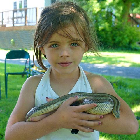 Little girl holding a snake