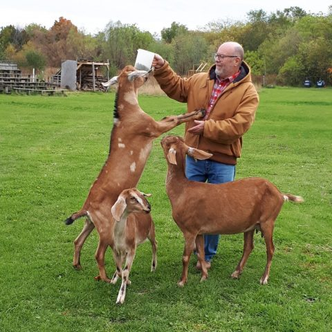 Fr. Mark and goats
